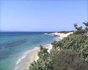 Naxos Alyko Beach; Cedar Trees and Solitude!
