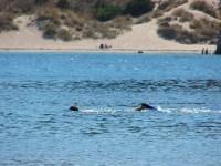 Voidokilia Bay and Beach