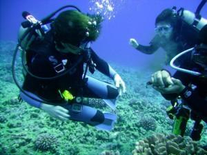 9 days / 8 nights: Athens (2 nights) - Mykonos (3 nights) - Santorini (3 nights), with 4 days of Diving and 2 Dives per day