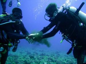 5 days /4 nights: Athens (4 nights), with 2 Days of Diving, 2 Dives per day, plus City Tour