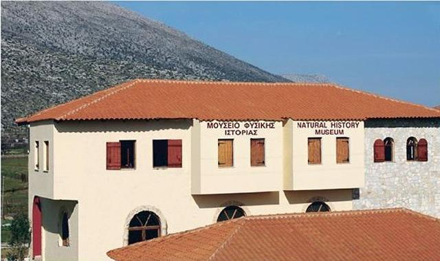 Μουσείο Φυσικής Ιστορίας Κωτσιομύτη, κεντρικό κτήριο