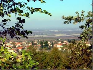 Vergina Village