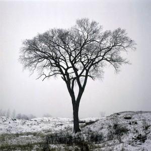 Χιονοδρομικές εμπειρίες: Η σκιά προσφέρεται σε άλλη εποχή!