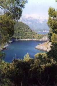 Evia View