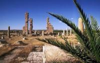Περιπέτεια και σαφάρι στις οάσεις της Τυνησίας