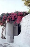 Mykonos Town Alleys