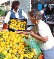 Oranges to produce Orange Juice Cheaper than Mineral Water!